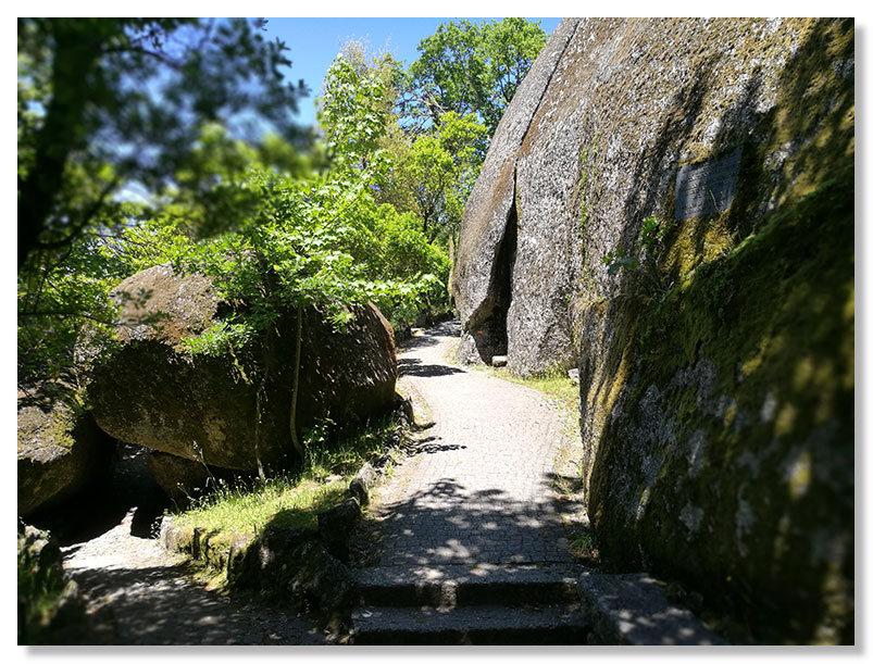Тропинка и камни в парке